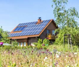 Panneaux photovoltaïques : revendre ou autoconsommer ?