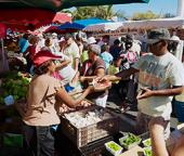 Commerce en Outre-Mer : des écarts de prix allant de + 6,9 % à + 12, 5 % avec la métropole