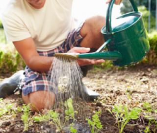 L'eau du robinet au jardin